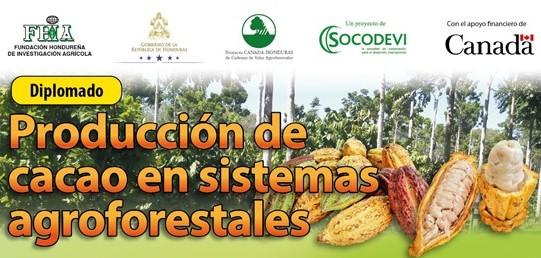 Diplomado de Producción de Cacao en Sistemas Agroforestales