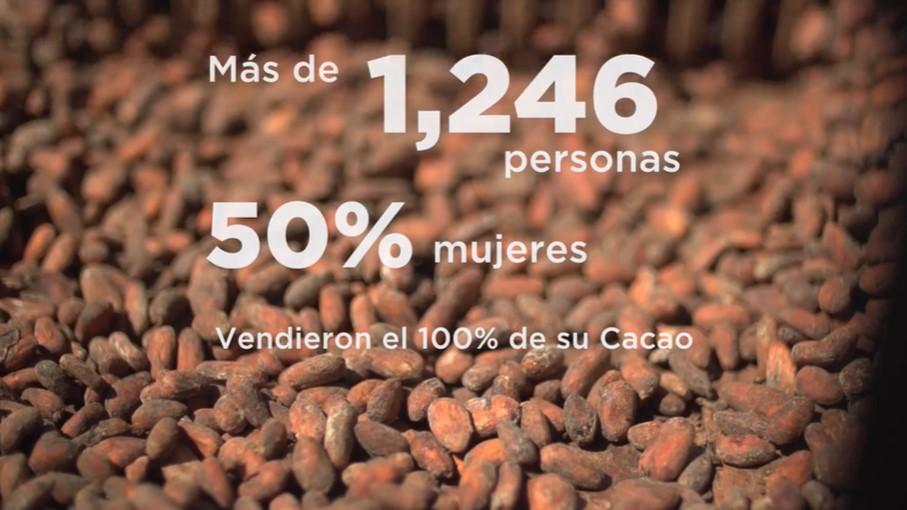 SOCODEVI en Honduras apoyando el desarrollo de la cadena de valor de cacao