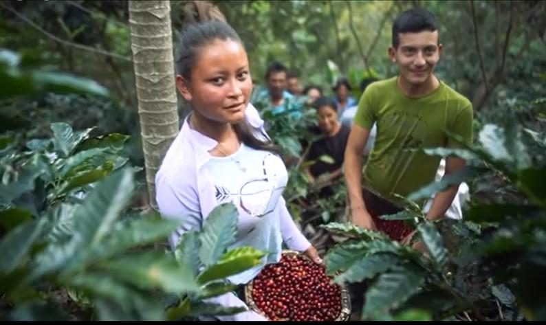 Honduras – Día Nacional de la Caficultura                  1ro. de Octubre
